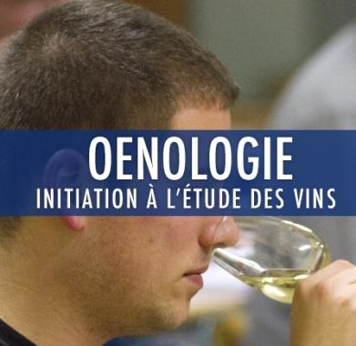 oenologie 1 : initiation à l'étude des vins