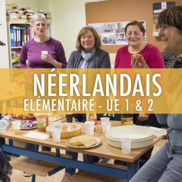 Néerlandais : Elémentaire UE 1 & 2