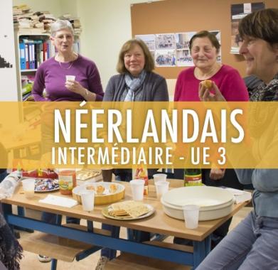 Néerlandais : Intermédiaire UE 3